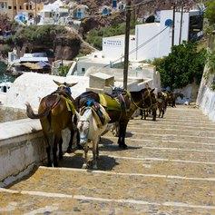 East Mediterranean photo 7
