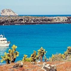 Galapagos Islands photo 28