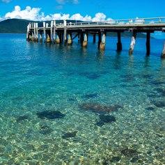 Whitsundays photo 18
