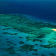 Great Barrier Reef photo 36