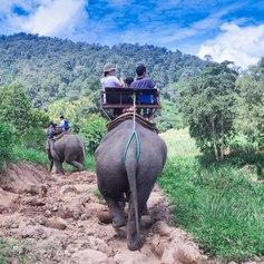 Thailand photo 16