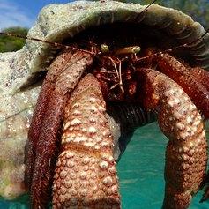 Mayaguana photo 7