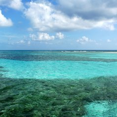 Amazing-looking barrier reef on the sea