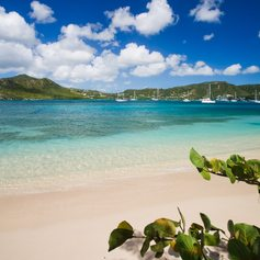 Enjoy the Picture-Perfect Beaches of the Antigua
