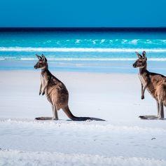 Australia photo 25