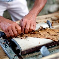 Hand rolled cigars in Cuba