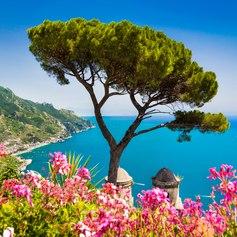 West Mediterranean photo 5