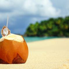 Sip on Coconut Milk on the Beach