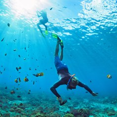 Discover the underwater world of the Bahamas