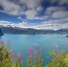 Antarctica, Caribbean, Central America, North America, Northern Europe, South America Winter Cruising Region