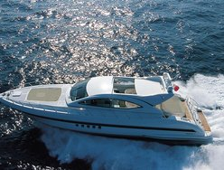 Sea Lion II photo 1