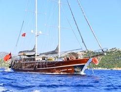 K Mehmet Bugra photo 1