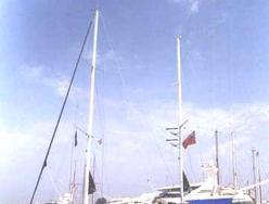 Sweet Sea photo 2