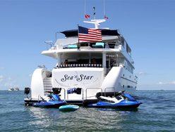 Sea Star photo 1