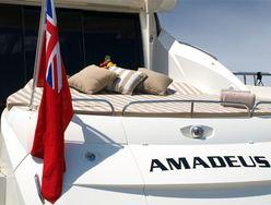 Amadeus photo 3