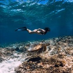 The Aquarium at O'Brien's Cay Photo 5