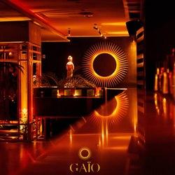 Gaio Photo 11