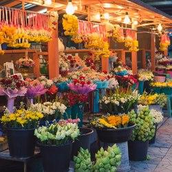 Place Des Lices Market Photo 19