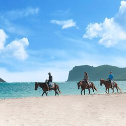 Coconut Bay Beach Resort & Spa Photo 28