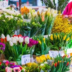 Place Des Lices Market Photo 29