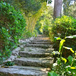 Villa Ephrussi de Rothschild Photo 16