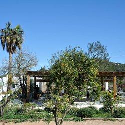 Aubergine Ibiza Photo 9