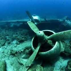 Pablo Escobar's Plane Wreck Photo 3
