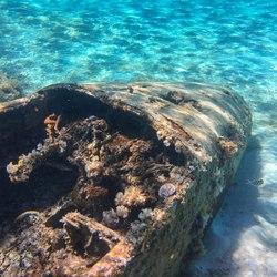 Pablo Escobar's Plane Wreck Photo 7
