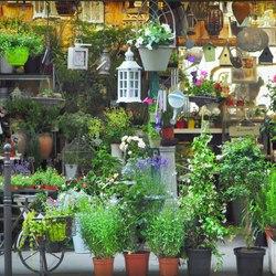 Place Des Lices Market Photo 31