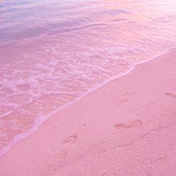 Pink Sand Beach Photo 2