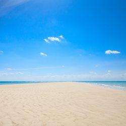 Big Farmer's Cay Sandbar Photo 8