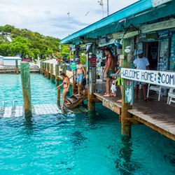 The nurse sharks of Compass Cay Photo 7