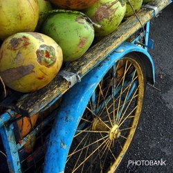 Wooden - painted blue vendor's vehicle with coconuts