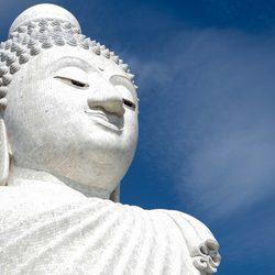 The Big Buddha Photo 6