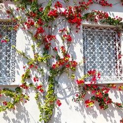 Villa Ephrussi de Rothschild Photo 20