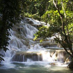 Amazing waterfalls in Jamaican rainforest