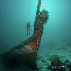 Sunken wrecks