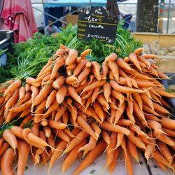 Place Des Lices Market Photo 40