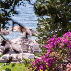 Hillside Beach Club Photo 21