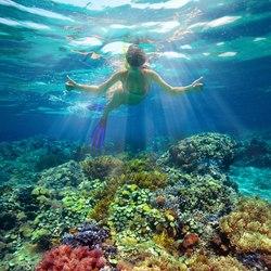 The Aquarium at O'Brien's Cay Photo 7