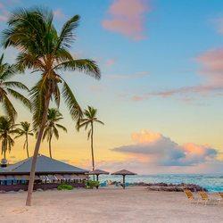 Nisbet Plantation Beach Club  Photo 20