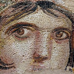 See the Gaziantep Zeugma Mosaic Museum