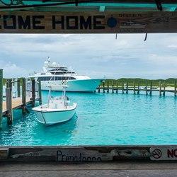 The nurse sharks of Compass Cay Photo 4