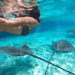The Aquarium at O'Brien's Cay Photo 9