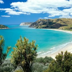 Be Spoilt for Choice for Beaches on a New Zealand Yacht Charter
