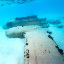 Pablo Escobar's Plane Wreck Photo 6