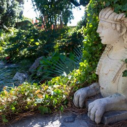 Negombo Thermal Gardens Photo 19