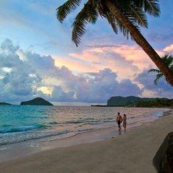 Coconut Bay Beach Resort & Spa Photo 17