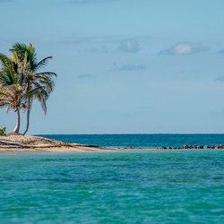 Nisbet Plantation Beach Club  Photo 34