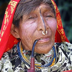 Old Indian woman in a traditional costume and jewellery